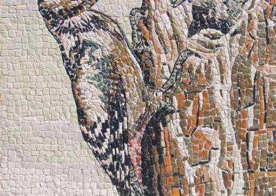 Il picchio / The woodpecker