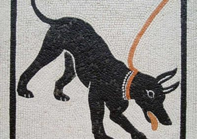 Cave Canem - riproduzione di mosaico romano / copy of Roman mosaic