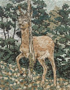 Cerbiatto / Young deer