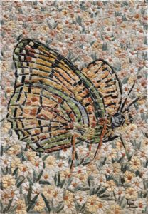 Farfalla / Butterfly