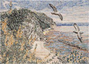 Gabbiani sul Conero / Seagulls