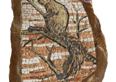 Scoiattolo / Squirrel