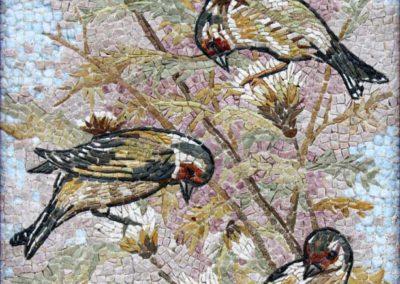 Volo di cardellini / Goldfinches's flight