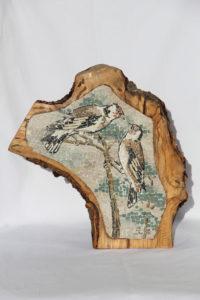 Cardellini nel legno / Goldfinches in the wood