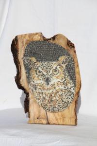 Gufo reale nel legno di ulivo / Eagle owl in the olive wood