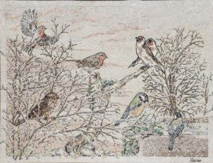 volo di uccelli / flight of birds